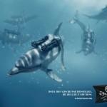 Sea Shepherd Campaign, une campagne originale pour la protection des océans