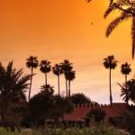 Marrakech : Destination phare des célébrités pour le réveillon