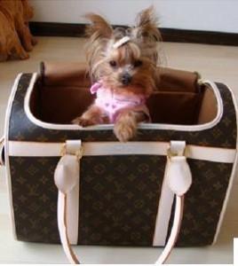Sac de voyage pour chien Louis Vuitton