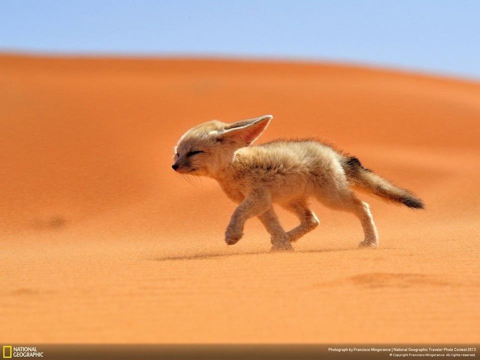 National-Geographic-Traveler-35
