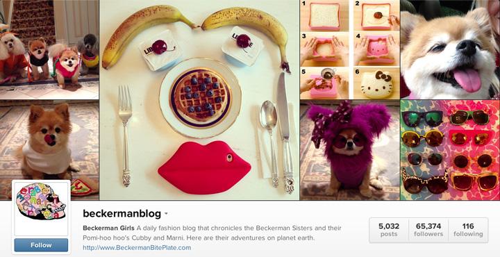 beckermanblog-instagram