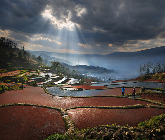weerapong-chaipuck-photography-11-545x463