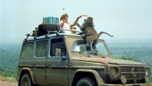Voyage : La lune de miel qui a duré 23 ans