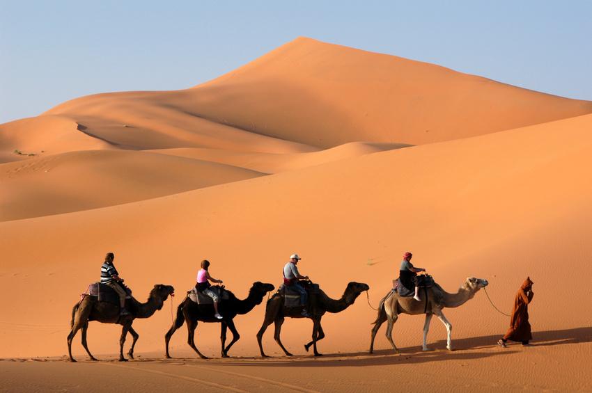 camel caravan in the sahara desert