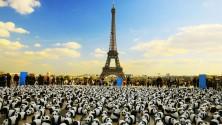 1600 pandas en papier mâché font le tour du monde