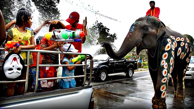 Elephants spray water at children in celebration of the Songkran