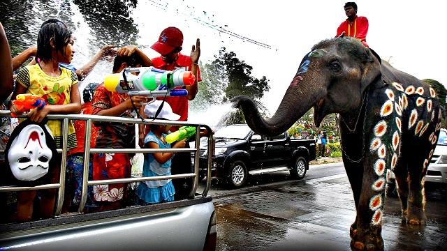 Elephants spray water at children in celebration of the Songkran