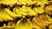 12 choses que vous ignoriez sur les bananes