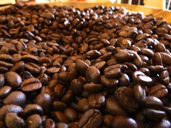 Grains-de-café-honduras