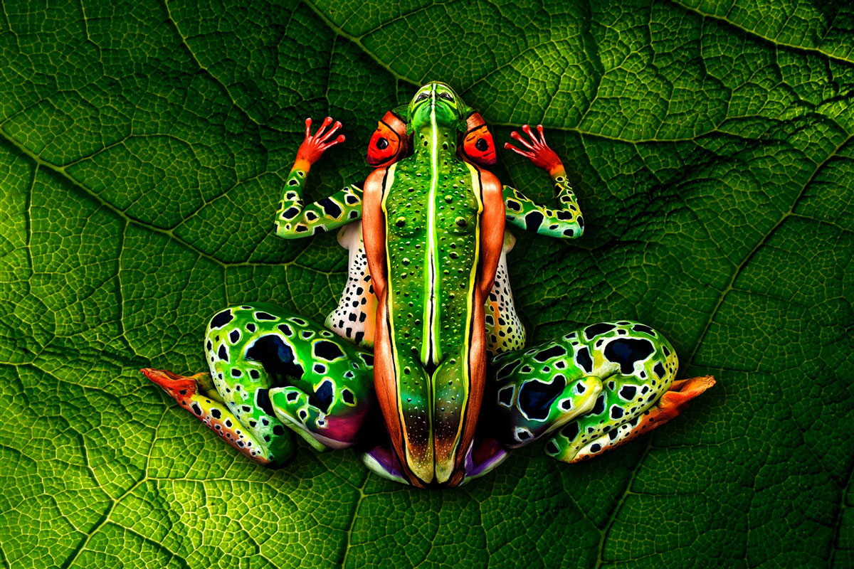 body-painting-grenouille