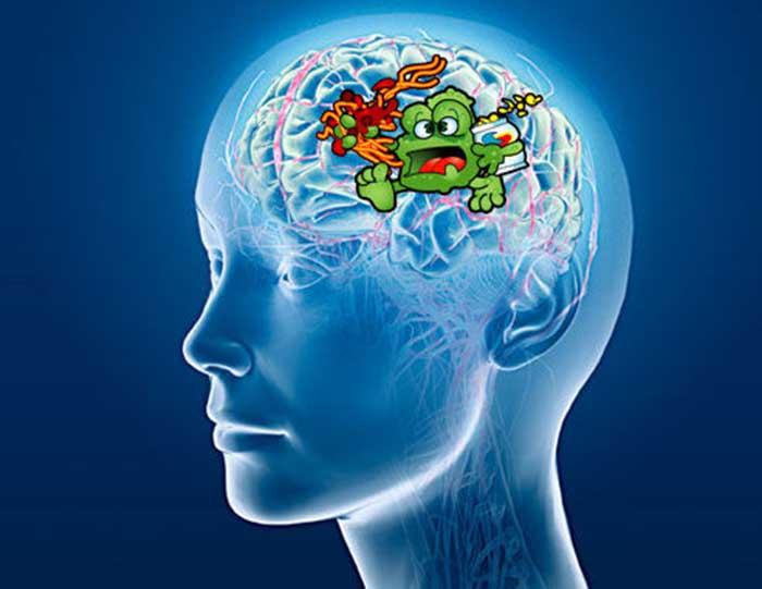 http://www.sott.net/image/s6/134867/full/brain_junk_food.jpg
