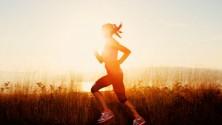 3 programmes qui vont vous aider à perdre du poids