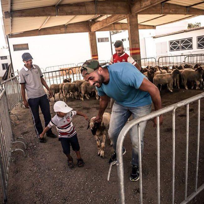 badr-hari-mouton-aid-9443a