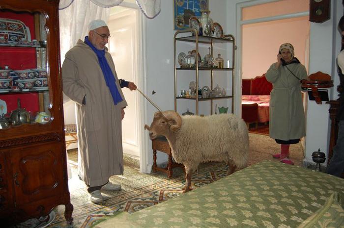 http://switzerland2ouagadougou.w.s.f.unblog.fr/files/2007/12/dsc0083hadgetpousetlphonemouton.jpg