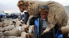 Les 13 souvenirs d'enfance que tout Marocain garde de la Fête de l'Aïd Lkbeir