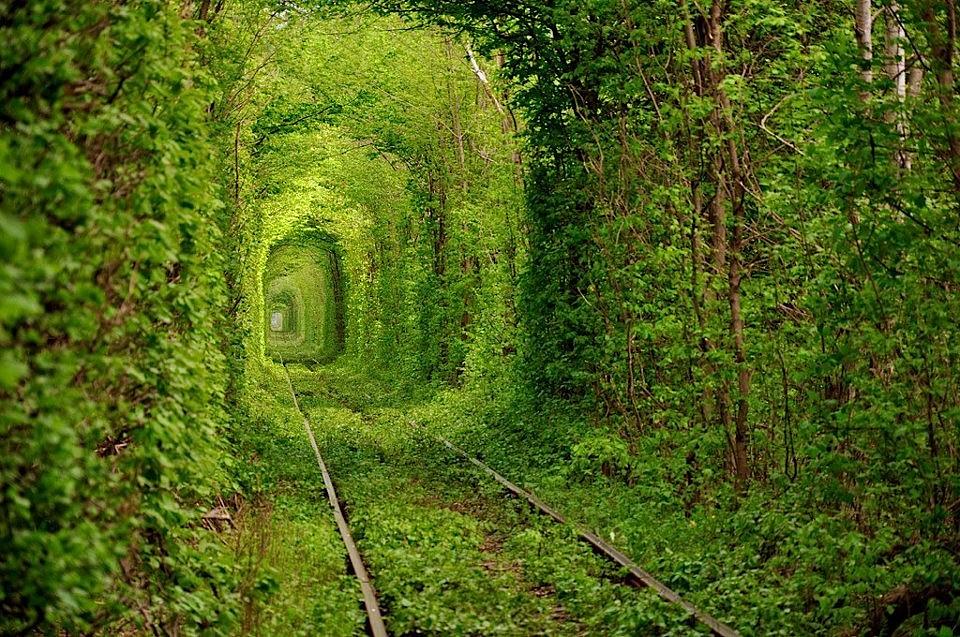 Le-Tunnel-de-lamour-Kleven-Ukraine