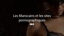 8 statistiques étonnantes sur les marocains et le porno en 2015