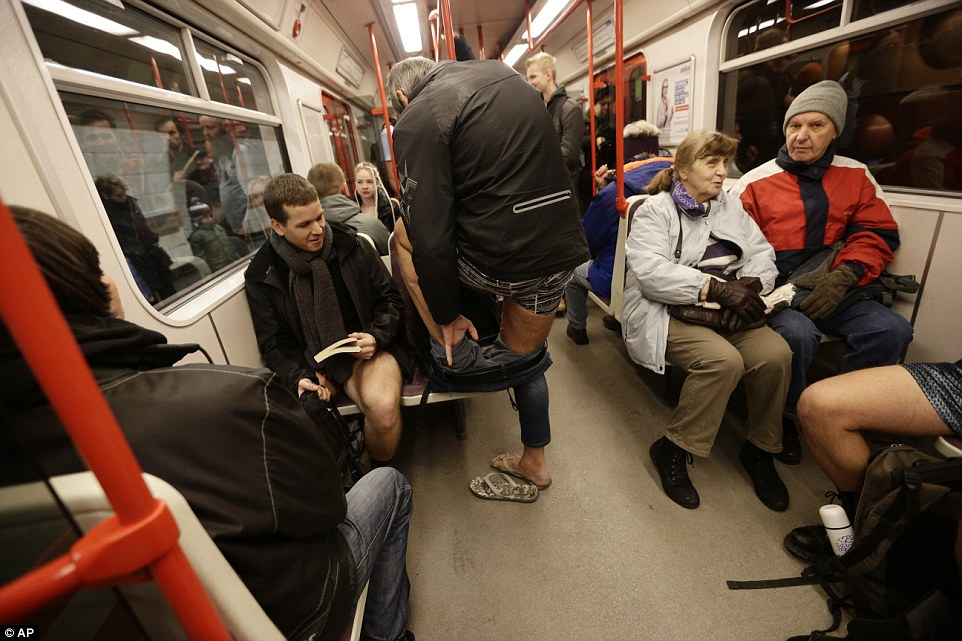 Why Dogs Ride the Subway in Moscow - Paperblog
