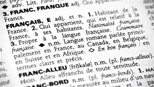 110406_06681_francais-dictionnaire-mot_sn635