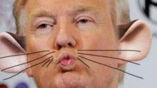 Présidentielle américaine : Les phrases cultes de Donald Trump