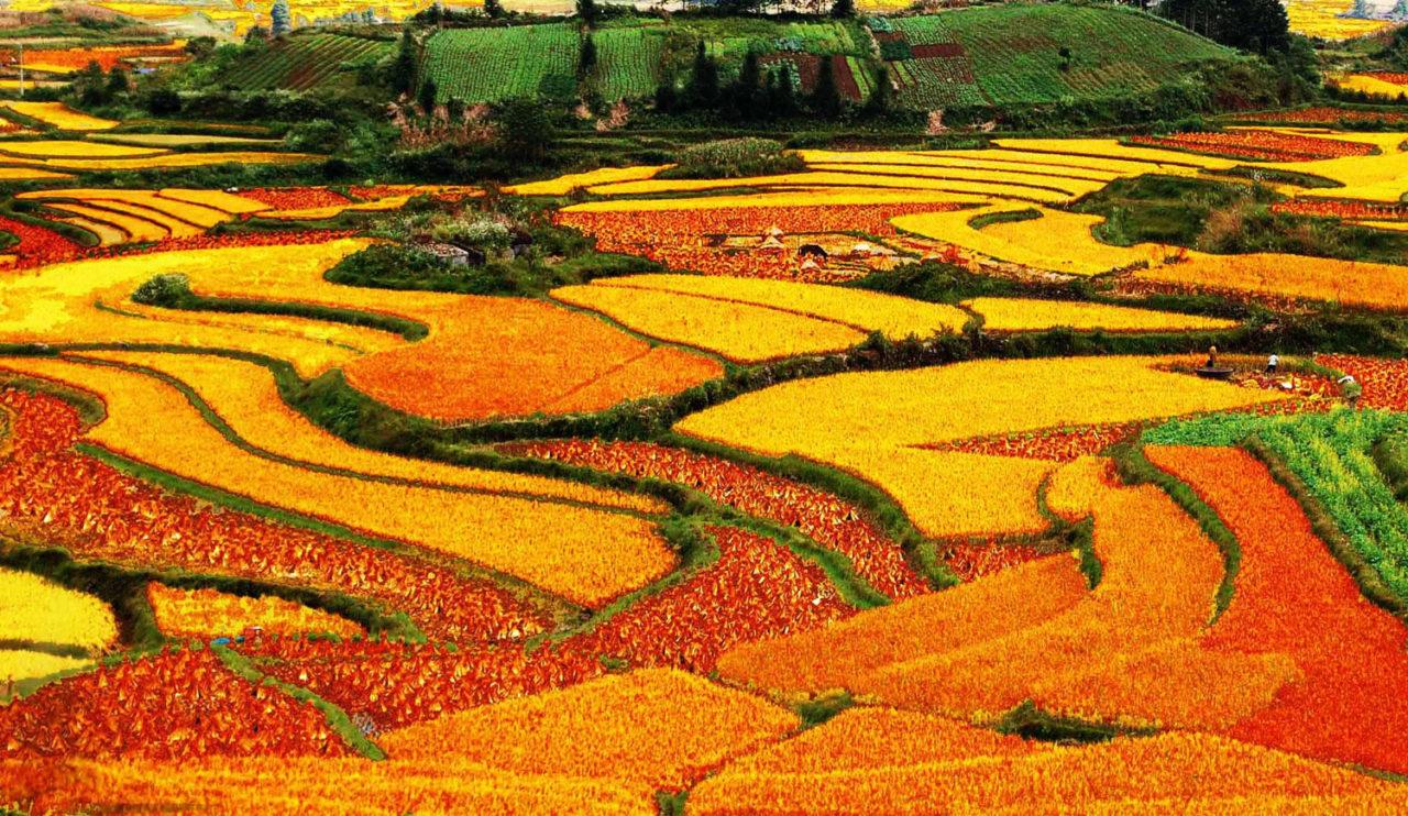 Yuanyang.County.original.984