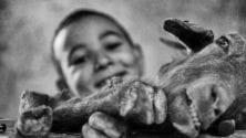 7 bonnes raisons qui font de Aid Al Adha au Maroc le meilleur