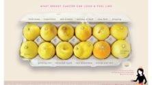 Cette association propose du citron pour détecter le cancer du sein