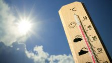 Ce weekend, les températures devront atteindre les 48°C
