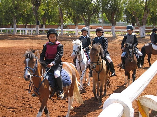 https://rabat.madeinmedina.com/fr/equitation.html