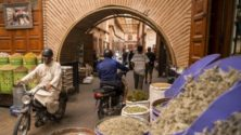 Marrakech : Le Mellah se refait une beauté, et les touristes affluent