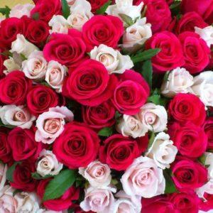 Un énorme bouquet : des fleurs par milliers