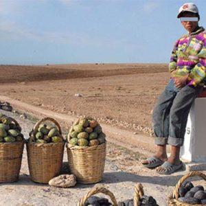 Vendeur de fruits et légumes sur une autoroute