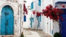 Voyager sans Visa : Tunisie, pays d'Elissa, du Jasmin et de l'Harissa