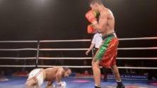 Mohamed Rabii met KO son adversaire en une minute à Marseille