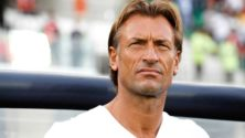 Hervé Renard, prochain entraîneur de la sélection émiratie ? Des rumeurs circulent…