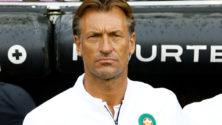 Voici l'entraîneur qui pourrait remplacer Hervé Renard