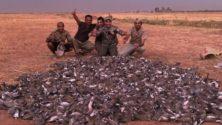 Vidéo: Près de 1500 oiseaux abattus par des Khalijis à Marrakech