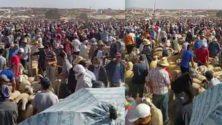 Et pendant ce temps : Les marocains envahissent les souks de moutons sans distanciation sociale