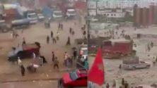 Vidéo : Ils volent avec violence des moutons dans un marché de bétail à Casablanca