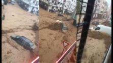 Vidéos : Tétouan inondée suite aux fortes pluies