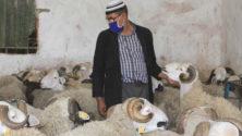 Officiel : Voici la date de l'Aïd el Kebir au Maroc